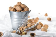 Bucket full of walnuts with a nutcracker on a white background Royalty Free Stock Images
