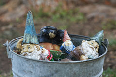 Bucket of gnomes. Garden gnomes in vintage galvanized bucket Stock Images