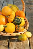 Bucket of gourds Stock Photo