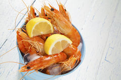 Bucket of king prawns on ice Royalty Free Stock Image