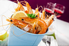 Bucket of king prawns on ice Royalty Free Stock Image