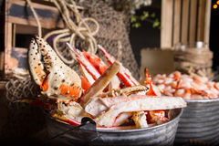 Bucket of lobster with pincer. Bucket of lobster featuring pincer, leg and a secondary bucket of shrimp. nautical fishing themed background Stock Photo