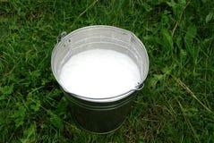 Bucket of milk. Bucket of fresh milk, on the grass Stock Photography