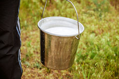 Bucket with milk Royalty Free Stock Image