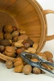Bucket of Nuts Stock Images