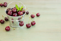 Bucket Of Cherries With Mint Leaves. Royalty Free Stock Image