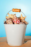 Bucket Of Seashells Stock Image