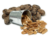 Bucket of Pecans Royalty Free Stock Photography