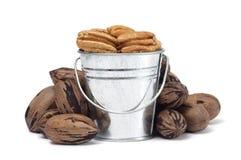 Bucket of Pecans Stock Image