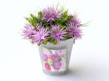 Bucket with Pink Asters Royalty Free Stock Image