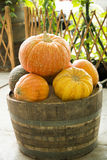 The bucket of pumpkin Royalty Free Stock Images