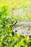 Bucket with rainwater Stock Image