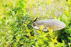 Bucket with rainwater Royalty Free Stock Photos