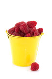 Bucket raspberries Stock Photo