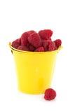 Bucket raspberries Stock Photo