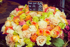 Bucket of roses on sale Royalty Free Stock Photo