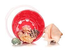 Bucket with seashells Stock Photos