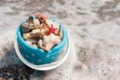 Bucket shells Royalty Free Stock Image