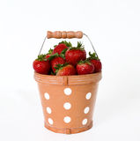 Bucket of Stawberries Royalty Free Stock Photography