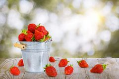In the bucket of strawberries . royalty free stock image