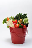 Bucket of Vegetables Royalty Free Stock Photo