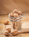 Bucket with walnuts Stock Images