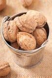 Bucket with walnuts Stock Photos