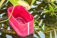 Bucket In Water Plant Pond Stock Image