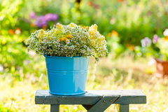 Bucket with wildflowers Royalty Free Stock Image