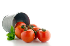 Bucketful of fresh ripe tomatoes, isolated on white background Royalty Free Stock Photography