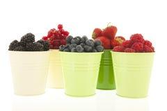 Buckets мягкий плодоовощ изолированный над белизной Стоковые Изображения RF