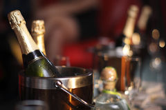 Buckets of champagne Royalty Free Stock Images