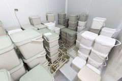 Buckets with cheese Stock Photo