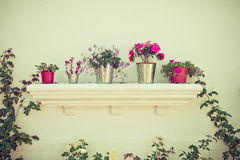 Buckets of flowers and Flower Pots Royalty Free Stock Photo