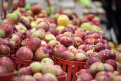 Buckets of Honeycrisp Apples for sale on a Canadian market in Montreal. It is a popular autumn fruit. Picture of several buckets of Honecrisp Apples, on a royalty free stock photography