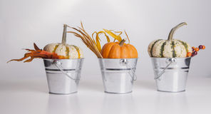 Buckets and Pumpkins Royalty Free Stock Photography