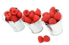 Buckets with Raspberries Stock Image