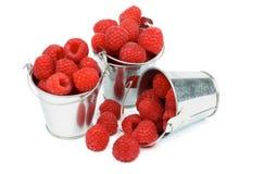 Buckets with Raspberries Stock Photos