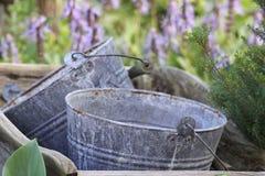 Buckets in a Wheel Barrow. Two steel buckets in a wooden garden wheel barrow stock images