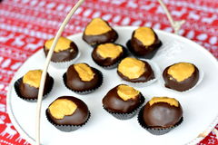 Buckeye balls. These are chocolate-covered balls of peanut butter and confectioners' sugar Royalty Free Stock Photography
