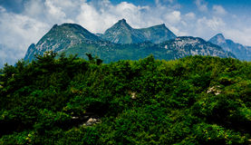 The Buckhorn Ridge of Qinling Mountain Royalty Free Stock Photo