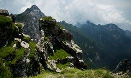 Buckhornen Ridge av det Qinling berg Fotografering för Bildbyråer