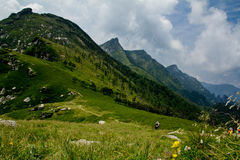 Buckhornen Ridge av det Qinling berg Royaltyfria Foton