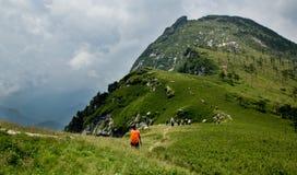 Buckhornen Ridge av det Qinling berg Arkivfoton