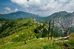 Buckhornen Ridge av det Qinling berg Royaltyfri Bild