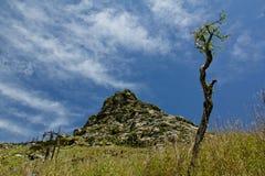 Buckhornen Ridge av det Qinling berget Royaltyfri Fotografi