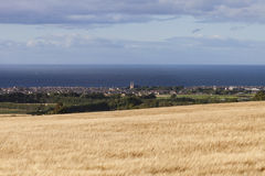Buckie, Scotland. With a field of barley in the foreground. On the horizon of the Moray Firth can be seen the Beatrice Oil Field and the Beatrice Wind Farm ( royalty free stock photography