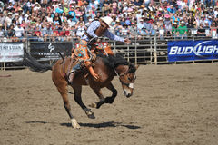 Bucking Bronco and cowboy. A cowboy performs in a competition while a bucking bronco attempts to shake him off in LAKESIDE, CALIFORNIA - APRIL 24: Annual Western Stock Photos