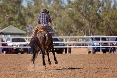 bucking riding лошади ковбоя Стоковое фото RF