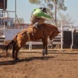 bucking riding лошади ковбоя Стоковое Изображение